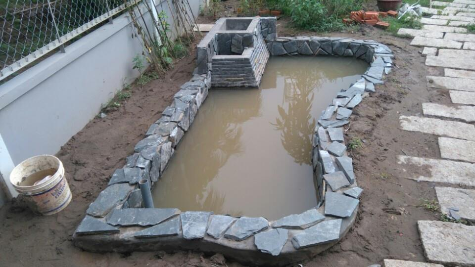 Pond for tropical fish