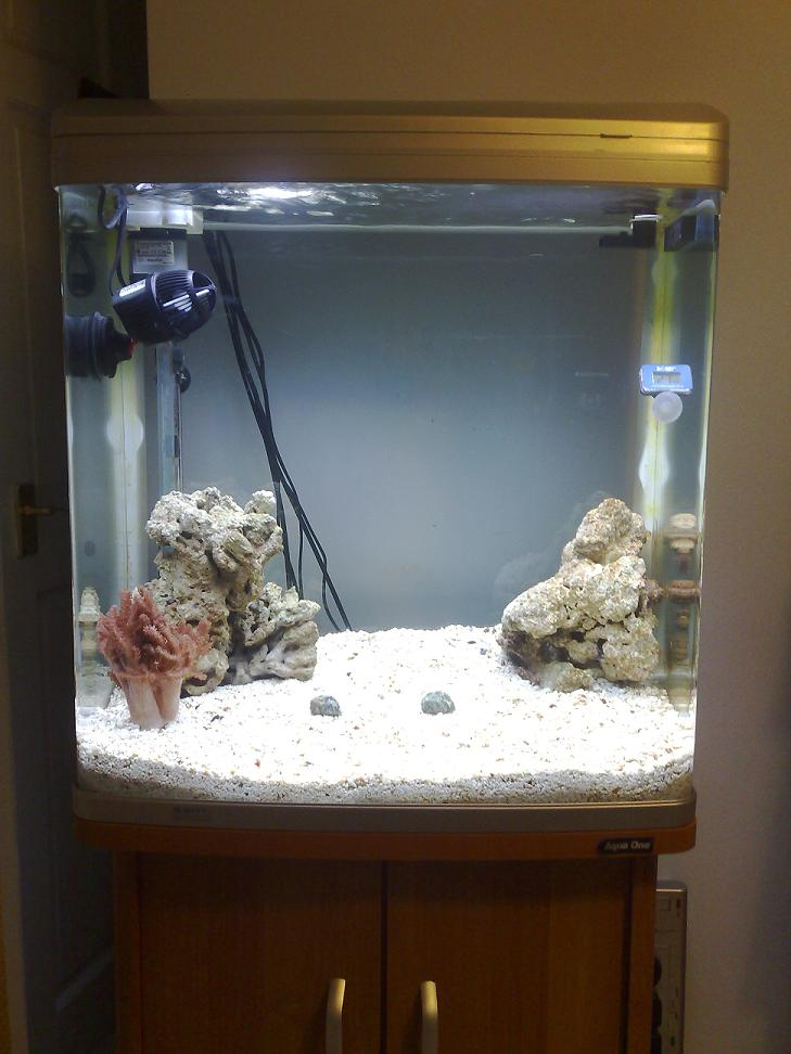 New tank