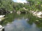 Yucatan Stream