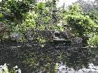 Pond and Waterfall from Front View [some fish slightly in view] (johnhales pond)