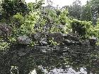 Another Pond and Waterfall shot from a Front View (johnhales pond)